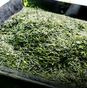 出品した栗原園の茶葉